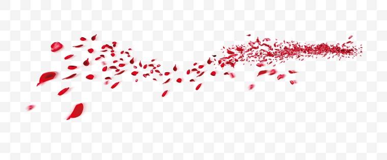 红色花瓣 花瓣