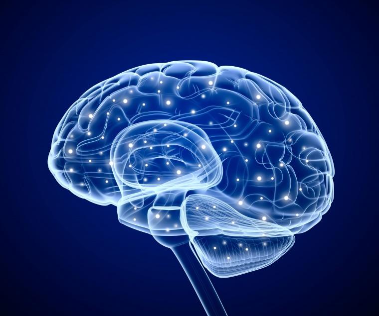科技大脑背景图片 - 大美工素材网_高质量免费素材