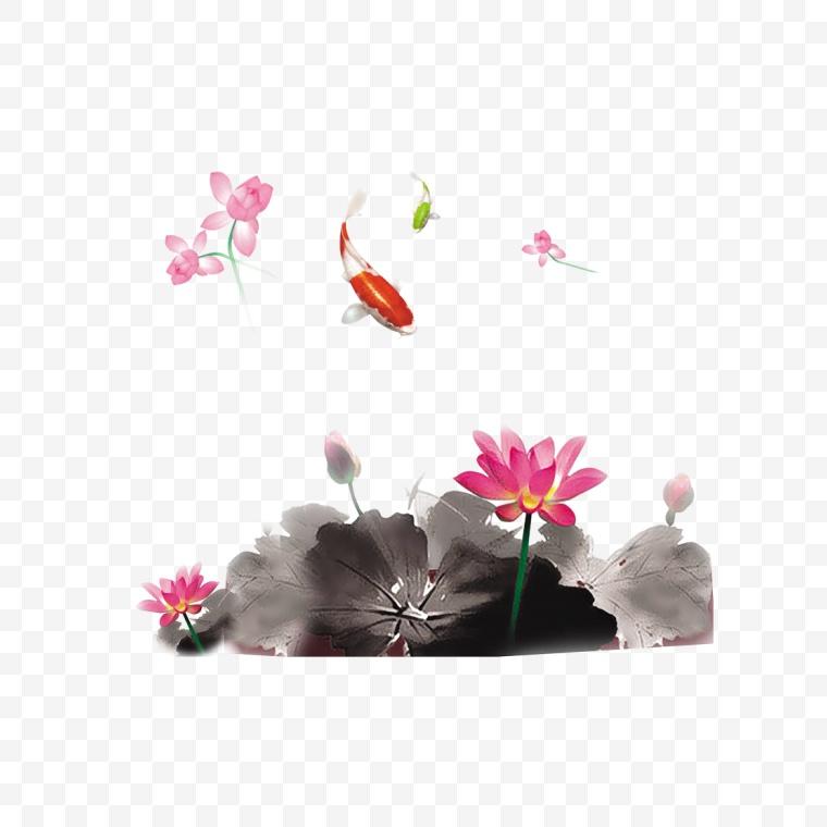 古典 荷花 金鱼 中国风 中秋节 古色古香 中秋 水墨