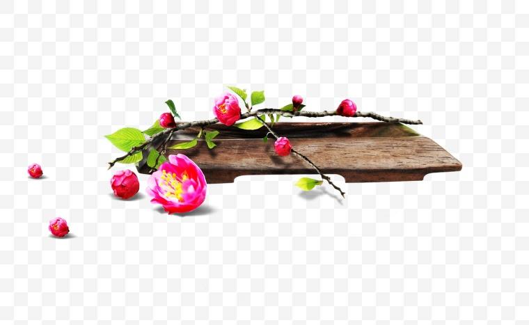 梅花 花 鲜花 红梅 植物 木板 自然