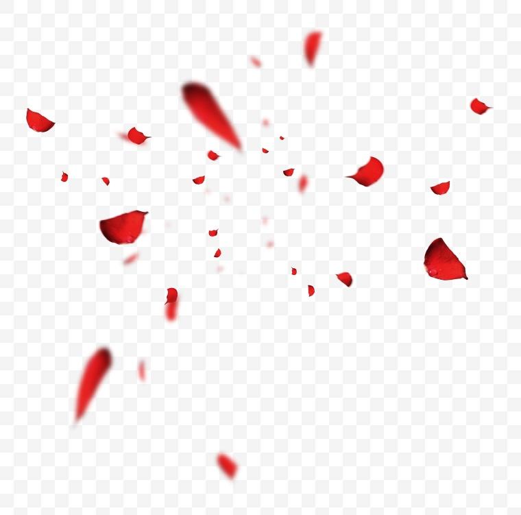 花瓣 花 鲜花 红色花瓣 飘零的花瓣 飘落的花瓣 玫瑰花瓣 意境 浪漫