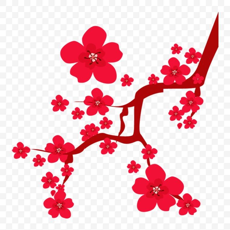梅花 腊梅 中国风 新年 春节 新春