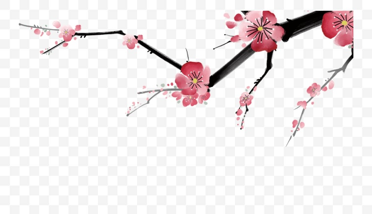 古典梅花 古典 梅花 腊梅 新年 新春 春节
