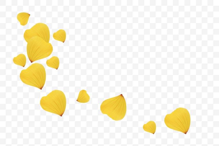 花瓣 花 鲜花 鲜花瓣 黄色花瓣