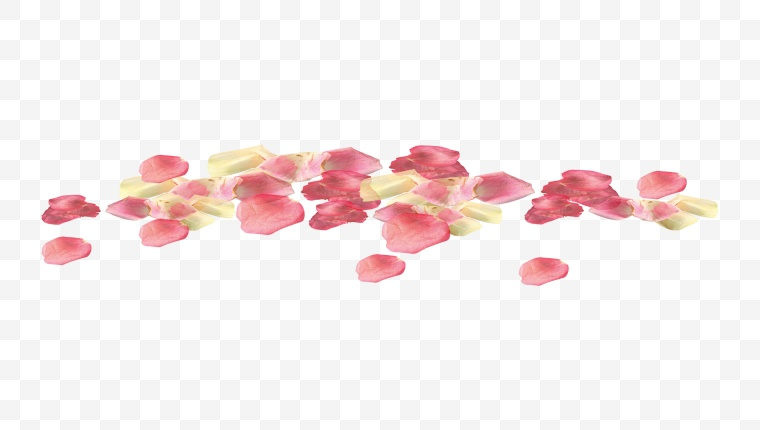 花瓣 花 飘零 飘零的花瓣 小花瓣 装饰